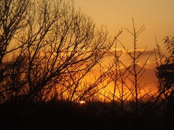 5時24分 夕日が沈み日が暮れます。.jpg