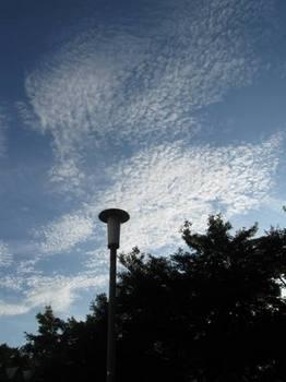 うろこ雲?鰯雲?.jpg