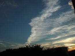 なんてね!夕方の雲 波のようでしょう~.jpg