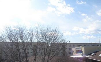冬らしいピリリとしたいい天気.jpg