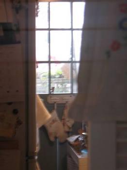 動線が真っ直ぐなので洗面所からベランダのグリーンが見えて嬉しい.jpg