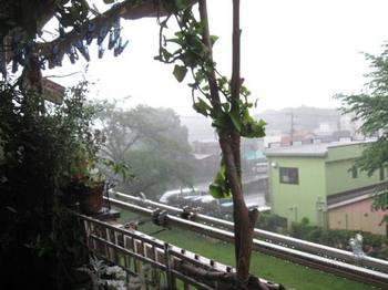 午後から大雨に・・・。.jpg