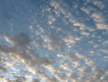 台風が去った後の空 波のような雲です.jpg