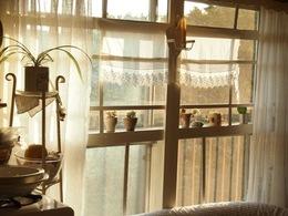 夕日が差し込んで眩しい窓際.jpg