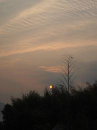 夕日が沈みます.jpg