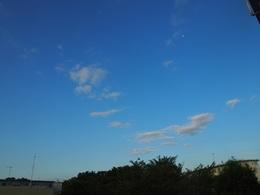 朝のうちは爽やかでしたが 暑い一日でした~.jpg