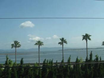 浜名湖辺りかしら?.jpg