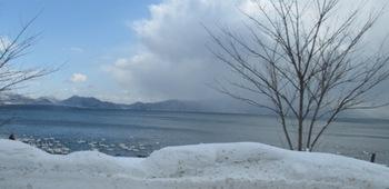 猪苗代湖の白鳥さん.jpg