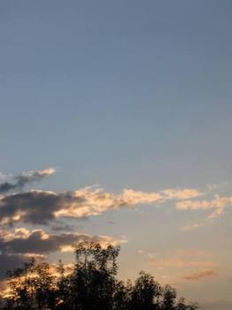 秋の夕日に.jpg