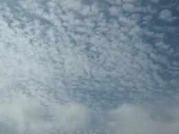 秋の雲だわぁ~.jpg