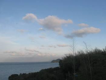 鶯の声に起こされ開いた寝ぼけまなこに飛び込んできた景色は 光の海.jpg