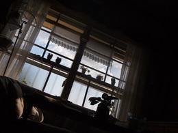 1 部屋の真ん中にねっ転んで 空を見た.jpg