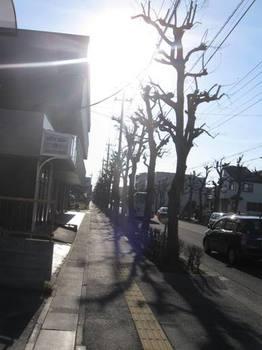 ちーちゃんの家からの帰り バスが行っちゃったので駅まで歩きました~.jpg