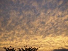 どんな気象条件だとこんな雲になるんだろう.jpg