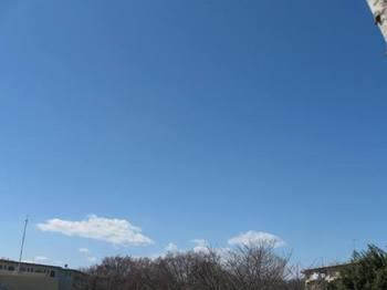 今日の空・・・ 春にしては冷たい空気.jpg