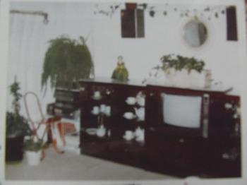 壁には布を貼り 家具超テレビがリビング正面に鎮座していたころ.jpg