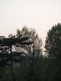朝 5時28分 ン??なんだ?朝日が光って無いぞ.jpg