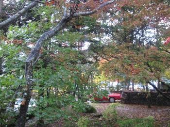 木々に囲まれた ホテル ハットウォールデンに到着.jpg