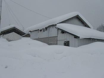 茅葺き屋根の実家は無くなって 倉庫が建っていました.jpg