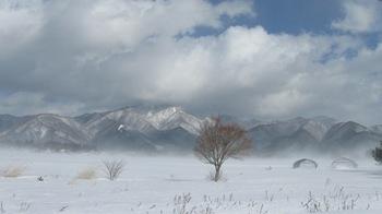 長く厳しい冬.jpg