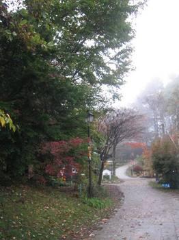 6時半 朝霧に包まれた会場 静かです.jpg