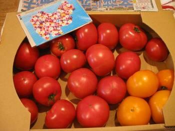 tomatoさん トマトありがとう~(笑).jpg